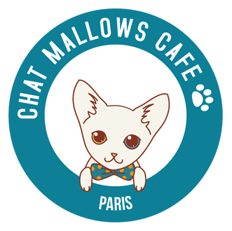 Chatmallows Café